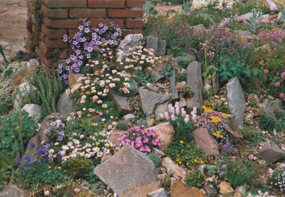 Mogelijkheden rots en plant - Amenager een rotstuin ...