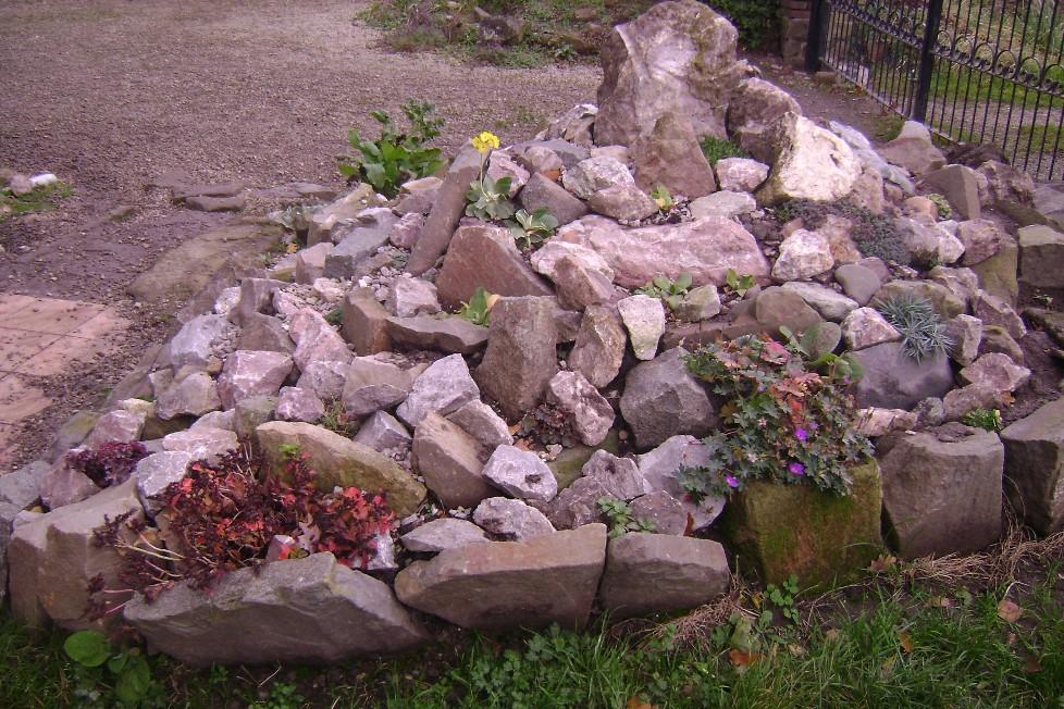 Rotstuin planten
